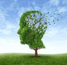 Morbo di Alzheimer fattori ambientali