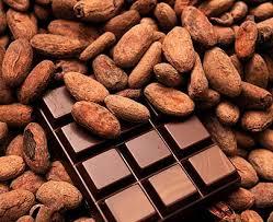 Cacao ed Alzheimer